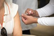 Vacinação febre amarela