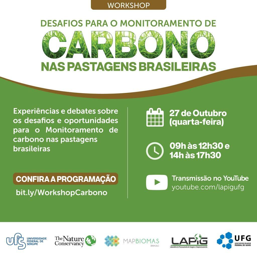 Workshop desafios para o monitoramento de Carbono nas pastagens Brasileiras