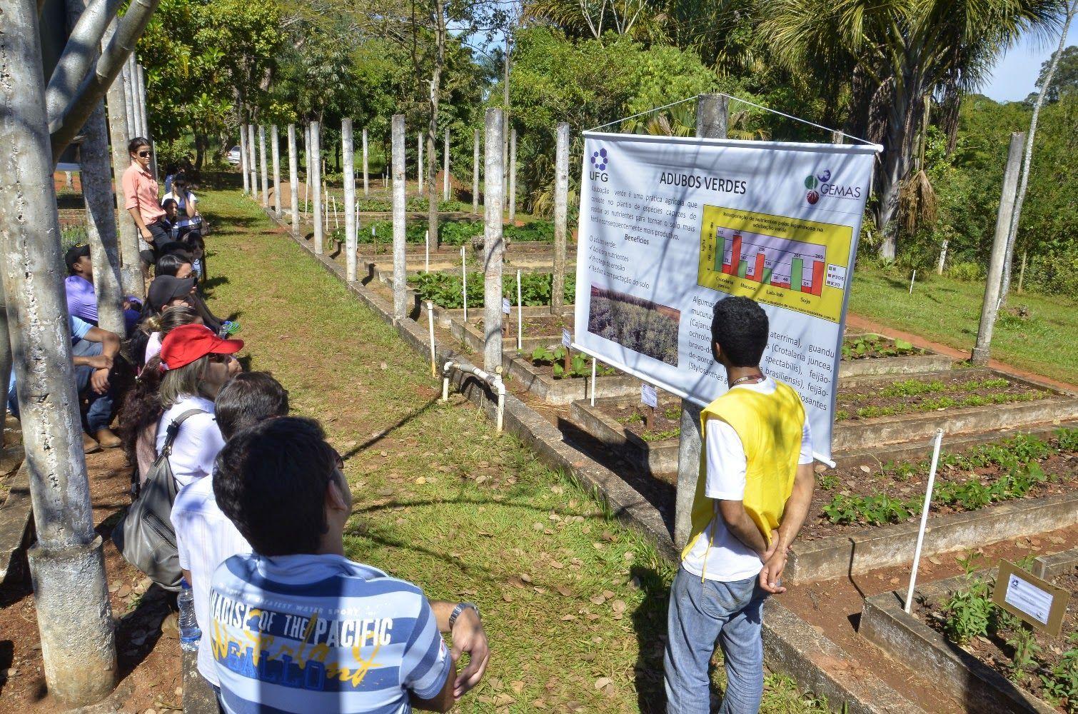 Visitantes durante Dia de Campo com temática agroecológica