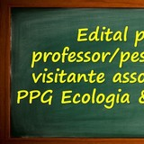 Edital Professor/Pesquisador Visitante
