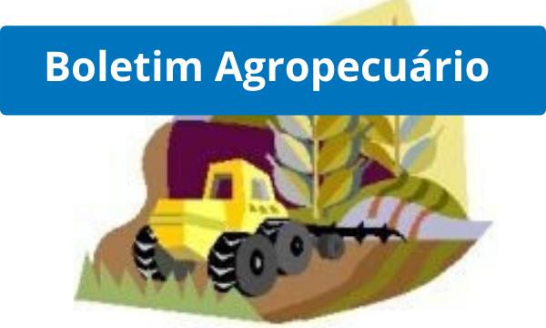 boletim agropecuário