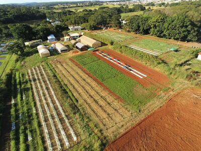 Horta Agronomia