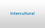 Intercultural_2020