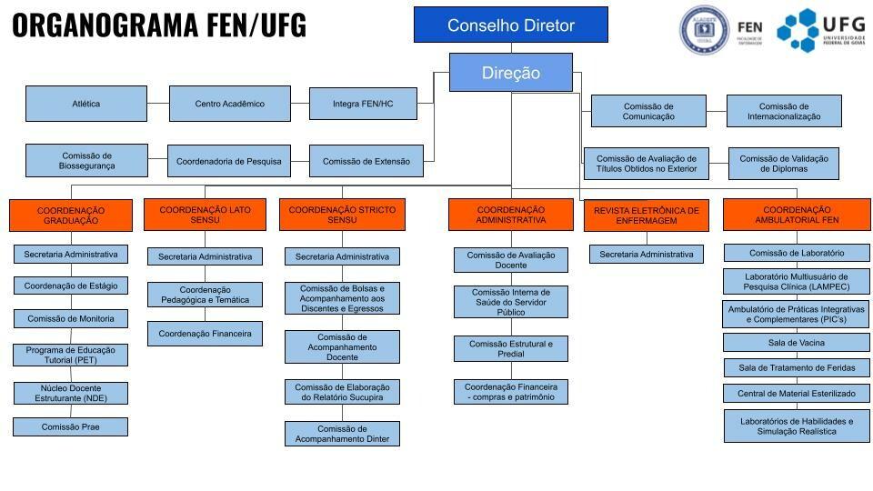Organograma Estrutural FEN