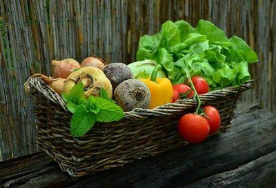 vegetais-verduras
