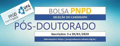 Divulgação PNPD