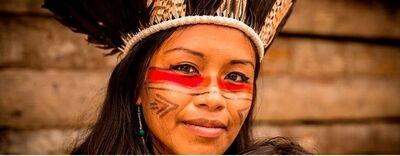 pograd indígena