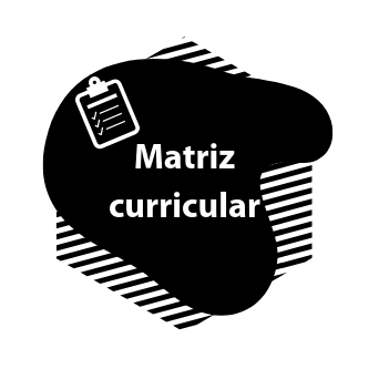 matriz curricular icone
