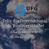 Dia Internacional da Biodiversidade!