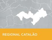 Mapa simples do município de Catalão.