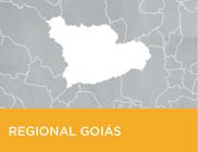 Mapa simples do município de Goiás.
