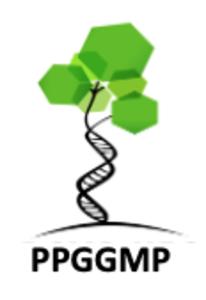 Logo PPGGMP t1.png