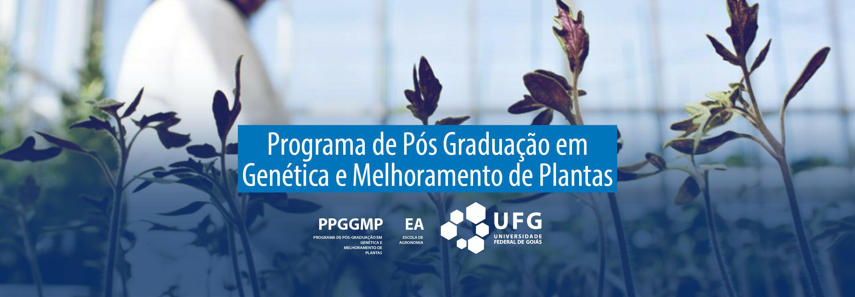 Banner PPGGMP 2020