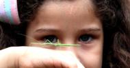 Crianças e insetos