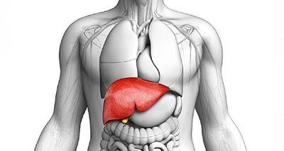 Metástase Fígado