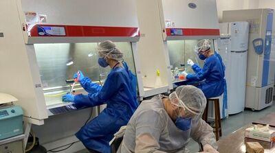 Laboratório IPTSP