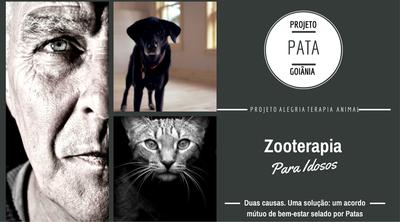 Projeto Pata
