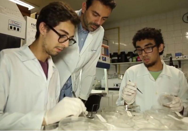 Equipe da pesquisa controle de carrapatos