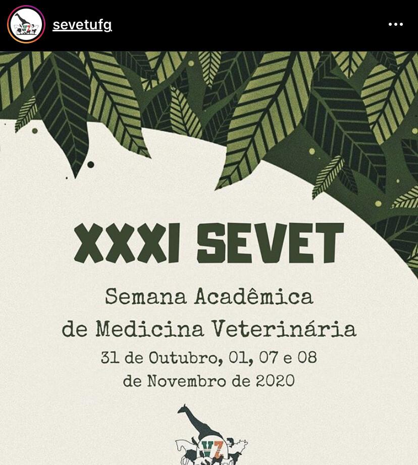 XXXI SEVET