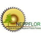 Núcleo de estudos produtos florestais