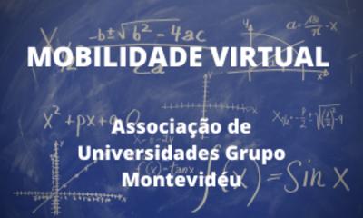 Mobilidade virtual