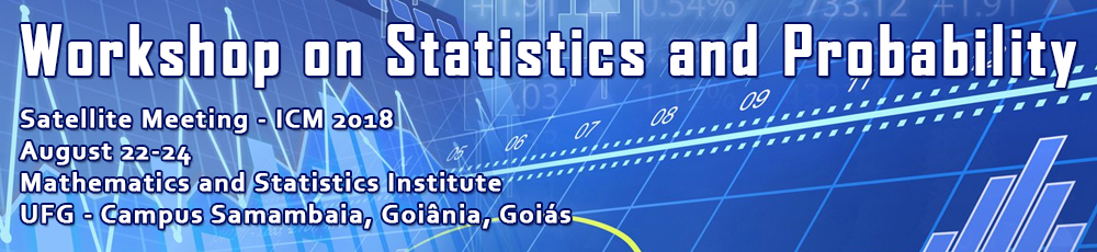 Workshop on Statistics and Probability ICM 2018