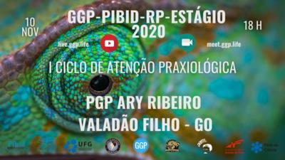 CAPA FOLDER I CICLO DE ATENCAO PRAXIOLOGICA PGP ARYZAO 10 NOV 2020