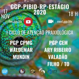 FEED FOLDER I CICLO DE ATENCAO PRAXIOLOGICA PGP WALDEMAR MUNDIM e ARYZINHO 17 NOV 2020