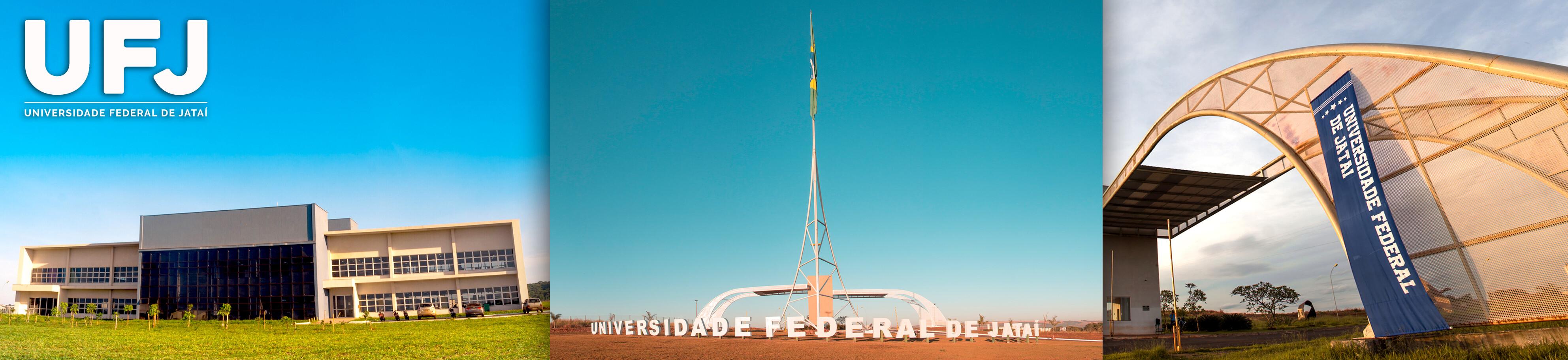 Banner UFJ 2