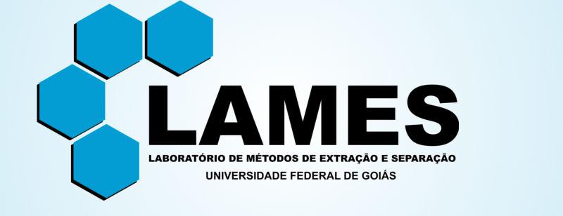 Imagem logamar do Lames