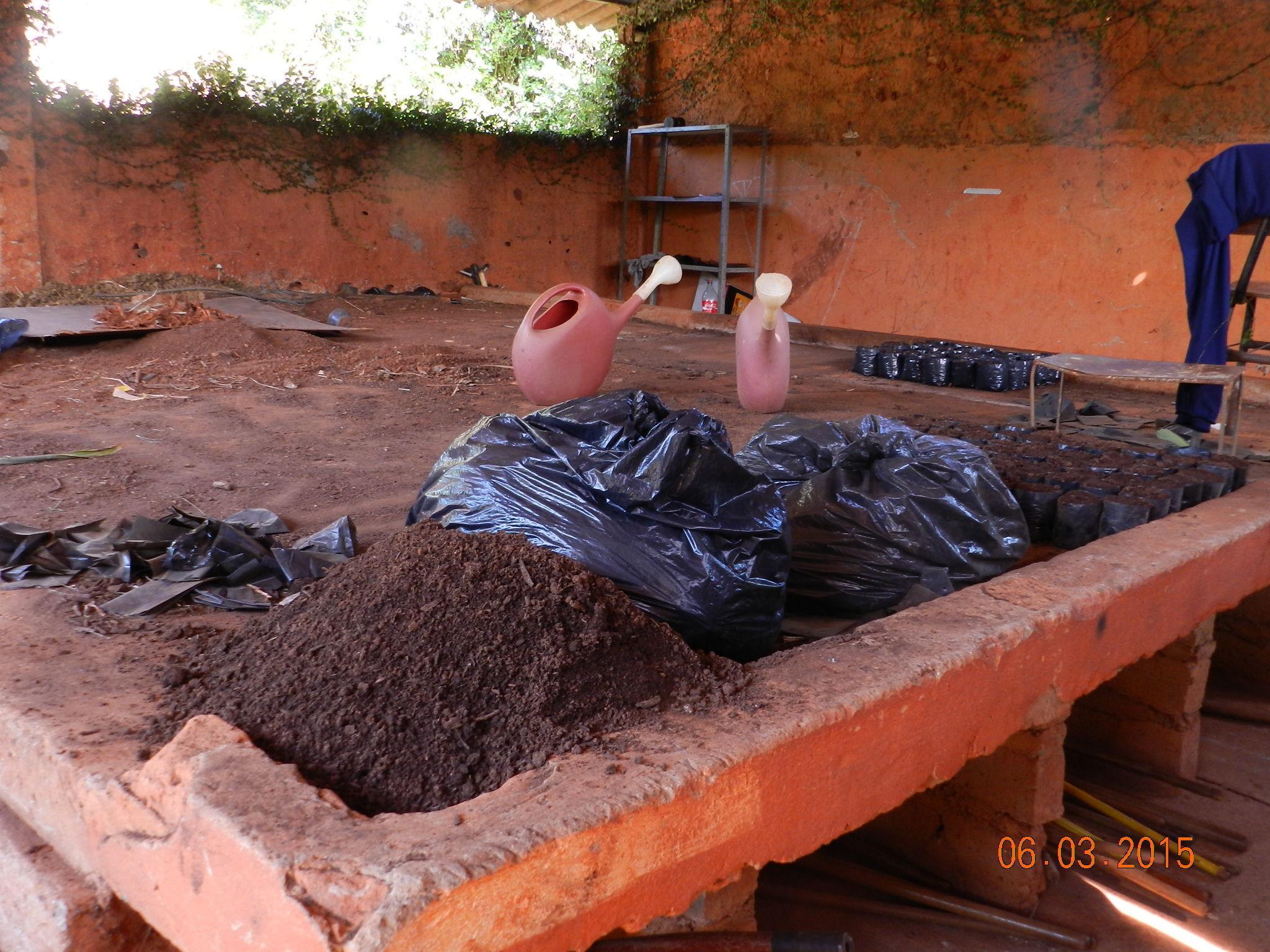 Escola De Agronomia – UFG – EA E Jardim Botânico Realizam Parceria Em ~ Plantas Medicinais Jardim Botanico