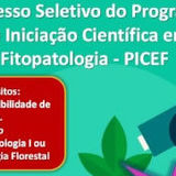 Banner Iniciação Científica