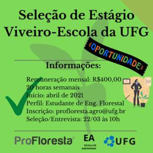 ESTÁGIO VIVEIRO-ESCOLA