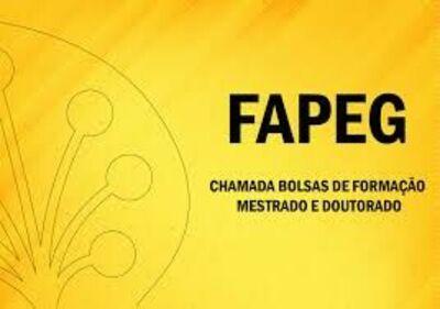 BOLSAS FAPEG