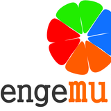 LOGO_ENGEMULTI_COLORIDA