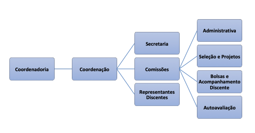 organograma corrigido