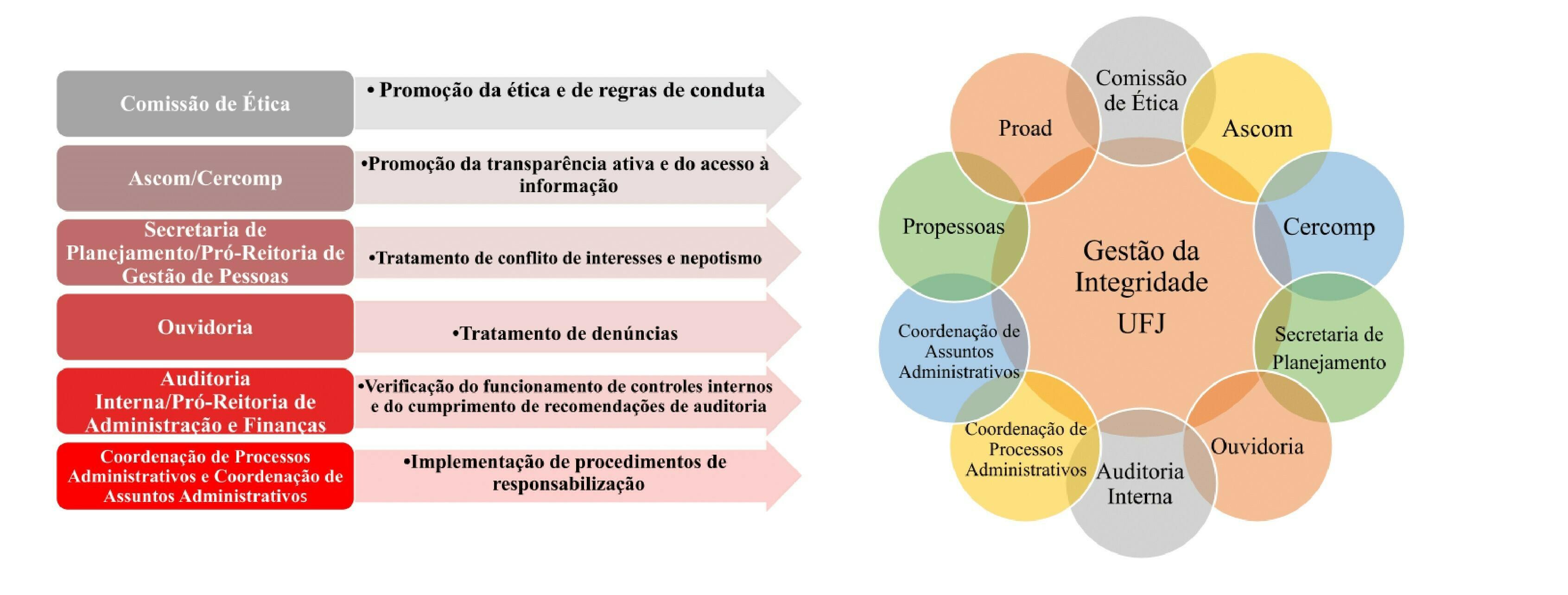 Grafico UDI