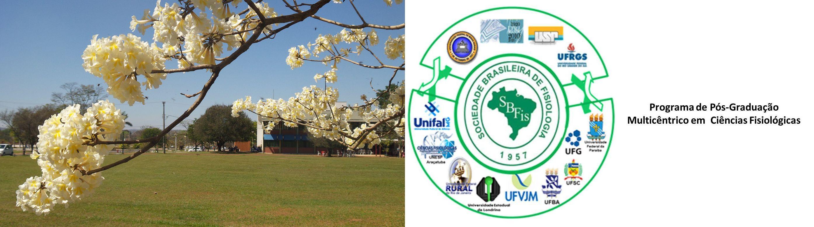 Logo do PPGCF e UFG em Flores