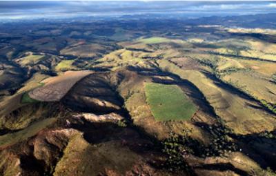 (Foto: WWF Brasil) obtida em https://aredacao.com.br/noticias/155683/cerrado-goiano-area-devastada-em-10-anos-equivale-a-6-cidades-de-sao-paulo