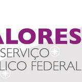 Questionário - Valores do serviço público federal