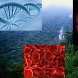 ensino de biologia