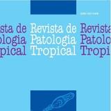 capa 1 2012