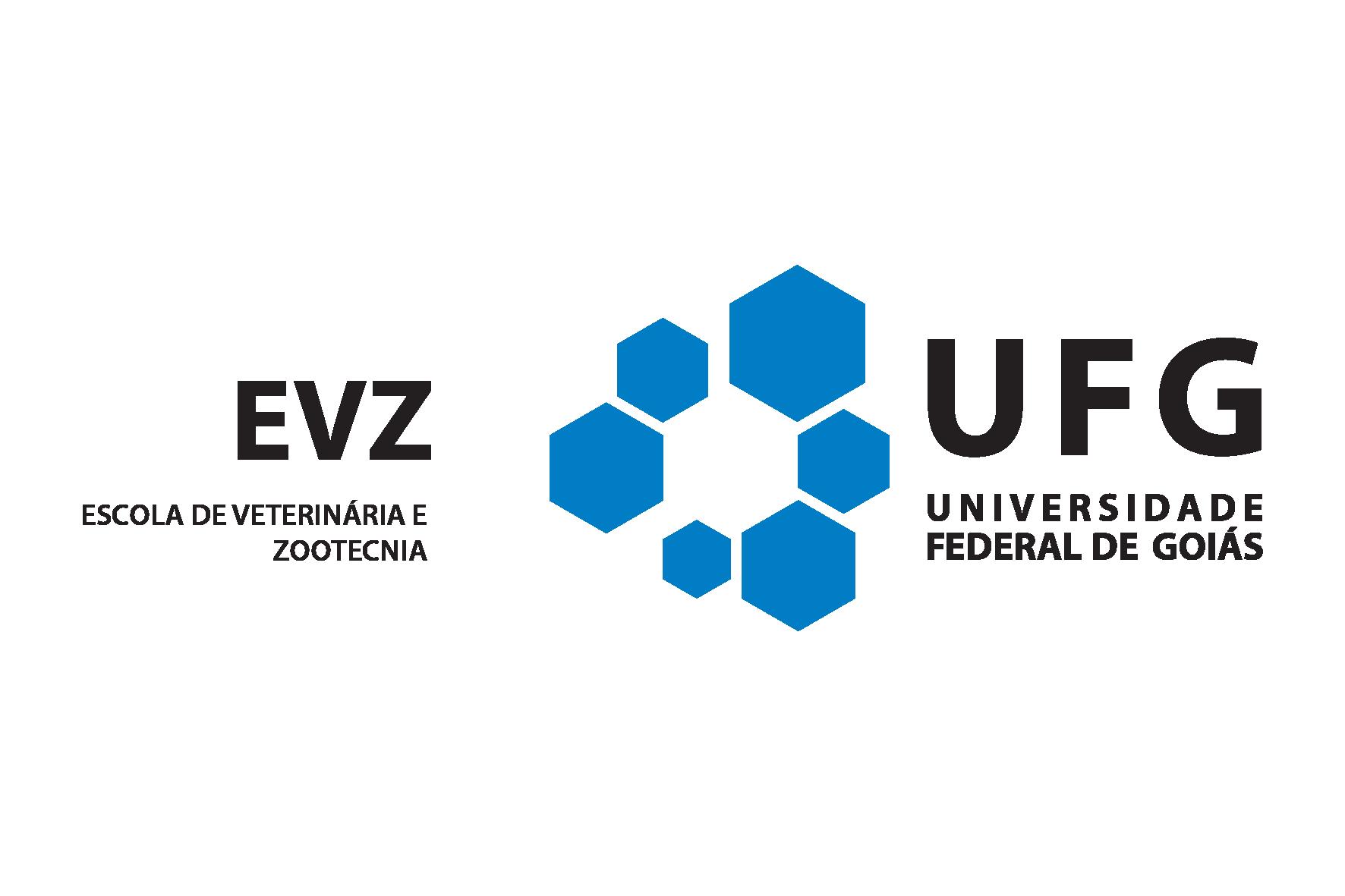 Logo EVZ colorido