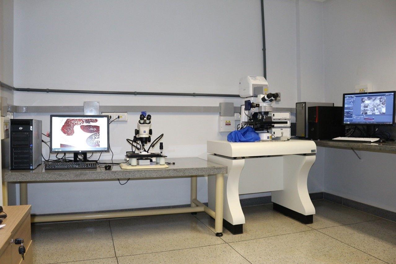 Microscopia Ótica