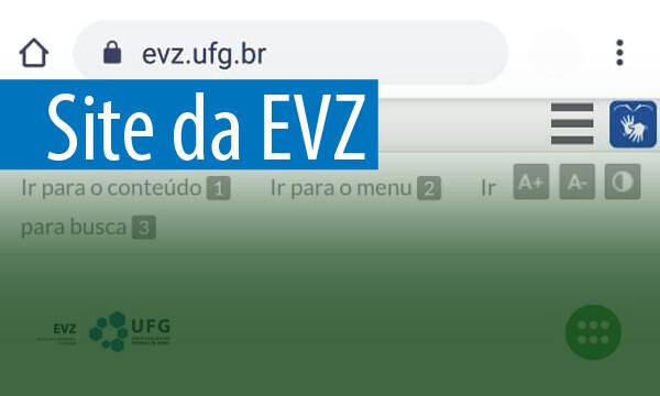 Banner EVZ