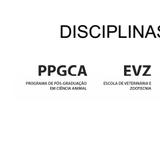 imagem disciplinas 2019-01