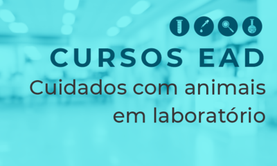 BannerNotícia_SitePRPI_CursosEAD_CuidadosComAnimais