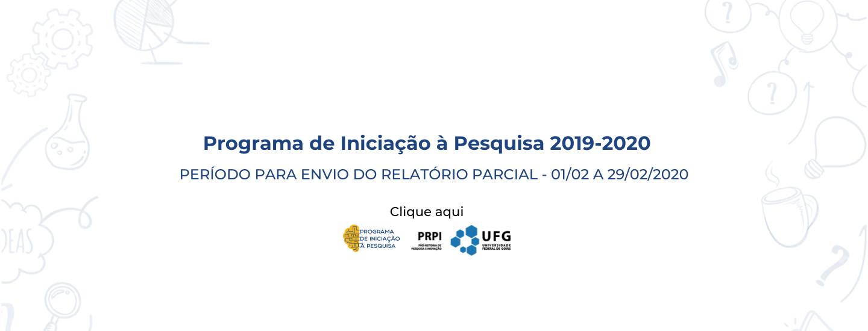 Relatório Parcial de Iniciação à Pesquisa 2019-2020