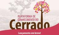 plataforma_do_conhecimento2