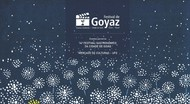 Festival de Goyaz - Capa